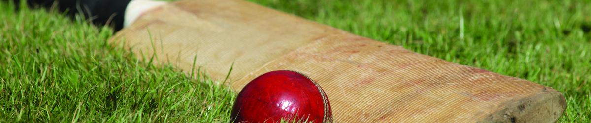 Cricket Bat Preparation