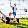 Harrod UK Standard Profile Football Nets 12ft x 6ft