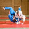 Beemat Club Judo Mat