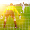 Harrod UK 3G Euro Football Portagoal Nets 24ft x 8ft