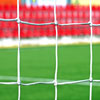 Ziland Standard Profile Full Size Football Goal Nets