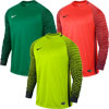 Nike Gardien Long Sleeve Senior Goalkeeper Jersey