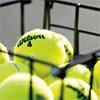 Wilson Championship Extra Duty Tennis Ball 24 Pack