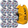 Mitre Delta Legend Training Football