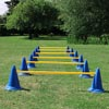 DOGM8 Dog Agility Speed Hurdle Pack