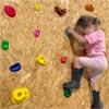 Annapurna Children's Climbing Holds 32 Pack