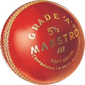 GM Maestro Cricket Ball
