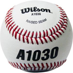 Wilson Official Professional League Baseball