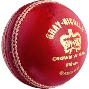 Gray Nicolls Warrior Cricket Ball