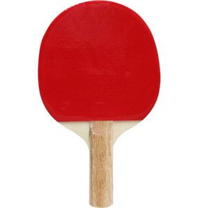 Schildkrot Reversed Table Tennis Bat
