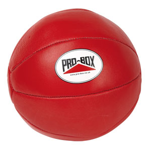 Pro Box Leather Medicine Ball