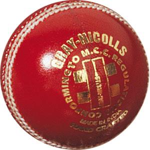 Gray Nicolls Test Special Cricket Ball