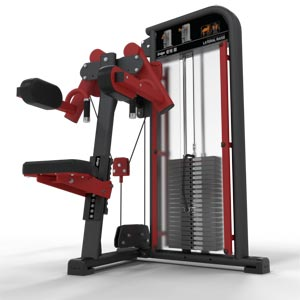 Exigo Selectorized Lateral Raise