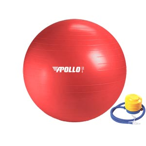 Apollo Stability Gym Swiss Ball 55cm