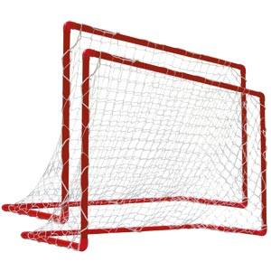 Euorhoc Floorball Goal