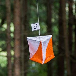 Newitts Orienteering Flag Marker