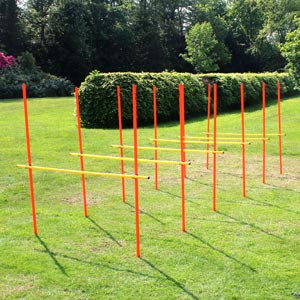 ATREQ Agility Poles Training Pack