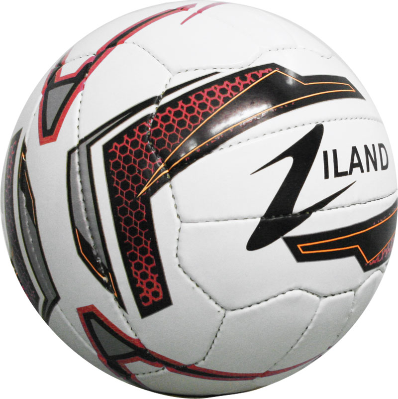 Ziland Pro Match Football