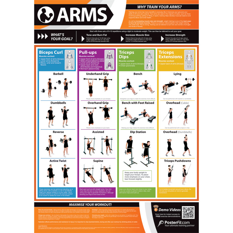 PosterFit Arms Exercise Poster