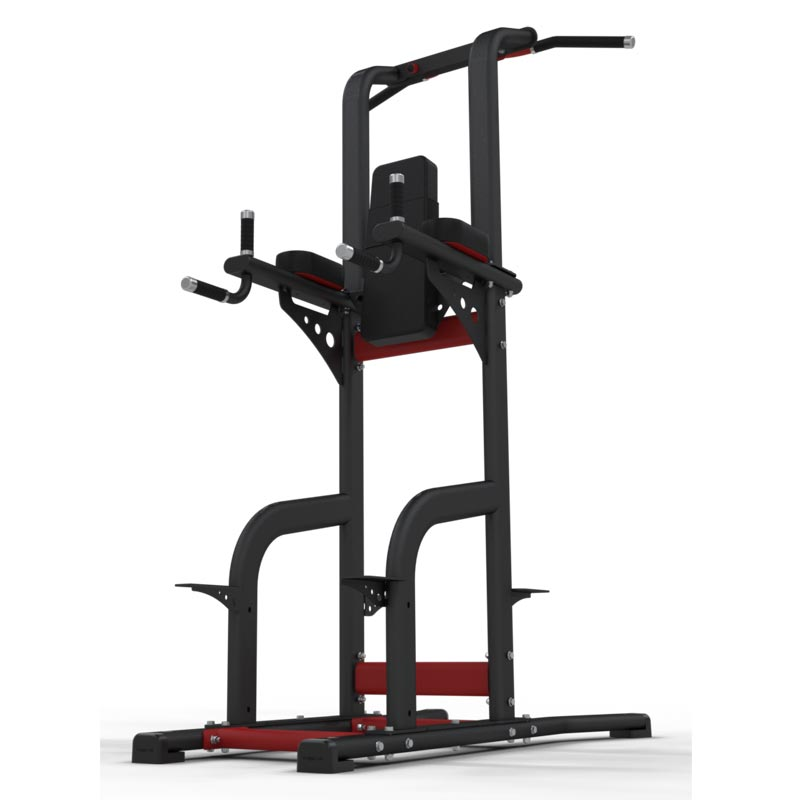 Exigo Rear Chinning Dipping Leg Raise Station