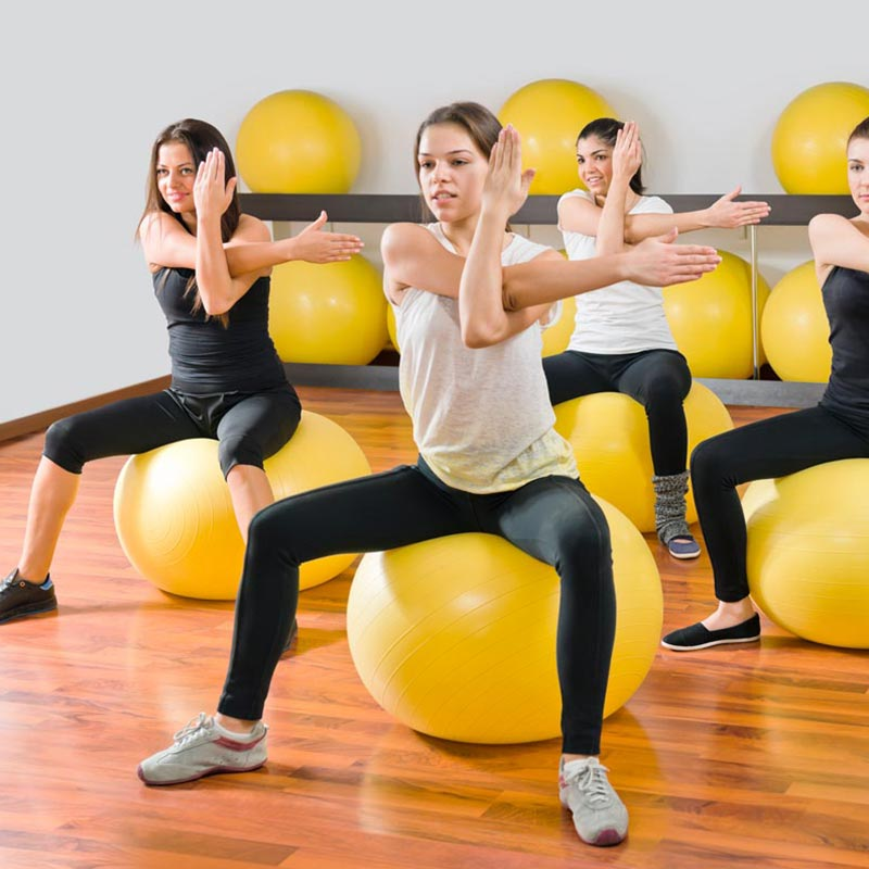 Apollo Stability Gym Swiss Ball