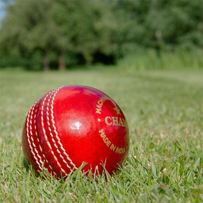 Elders Club Cork Cricket Ball