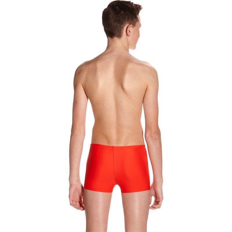 Speedo Boys Star Kick Logo Panel Aquashort Risk Red/Spearmint/Black