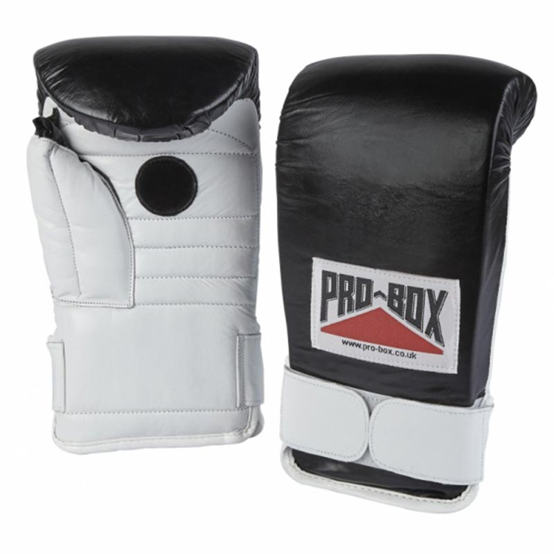 Pro Box Coach Spar Gloves