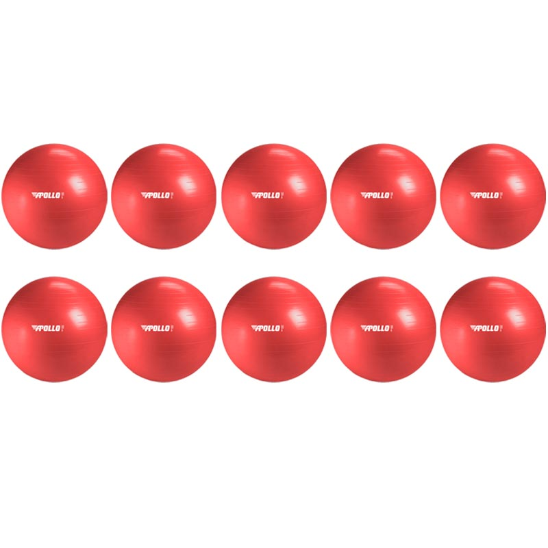 Apollo Stability Gym Swiss Ball 55cm 10 Pack