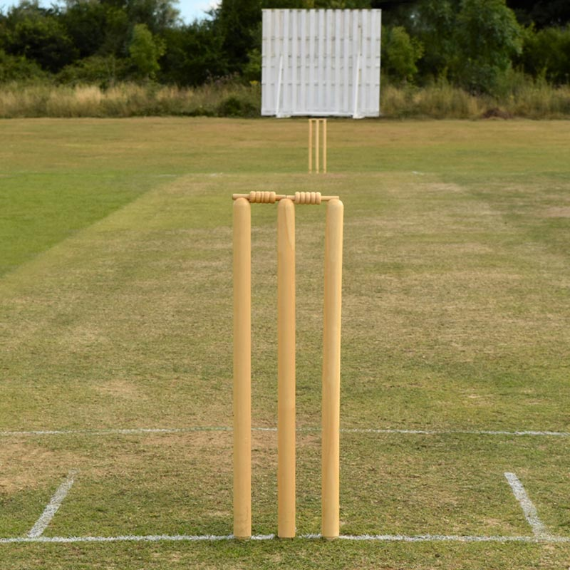 Elders Club Wooden Cricket Stumps
