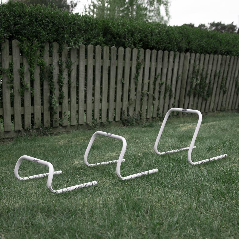 Ziland Academy Training Hurdle